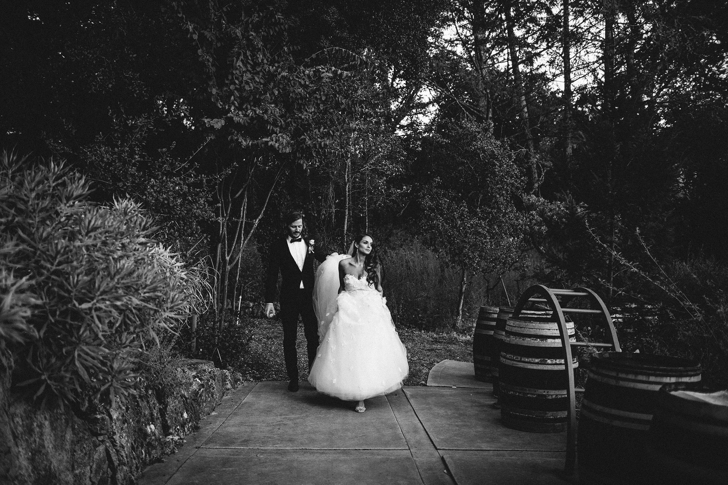 Valle De Guadalupe Wedding Photographer